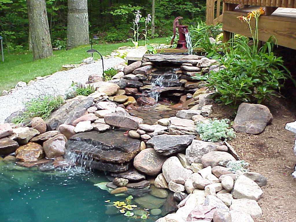 Primo laghetto con cascata for Cascate per laghetti da giardino
